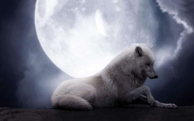 Libra Balance Full Moon