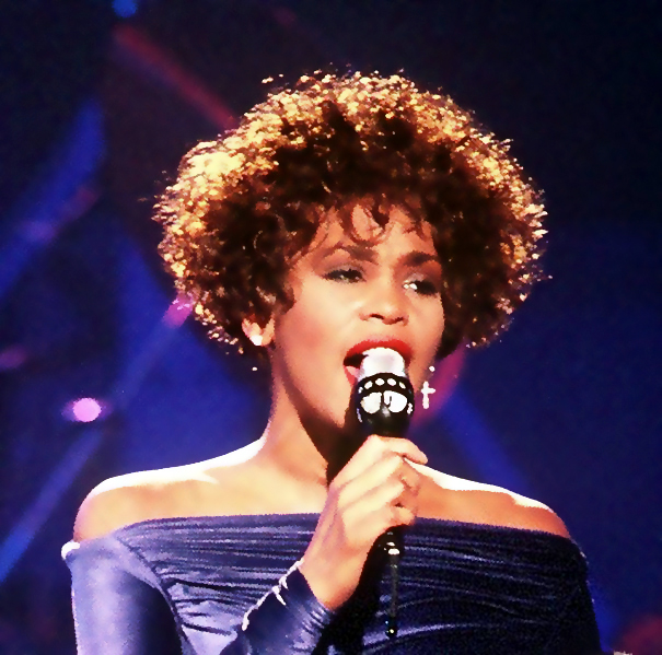 Whitney Houston a fallen star