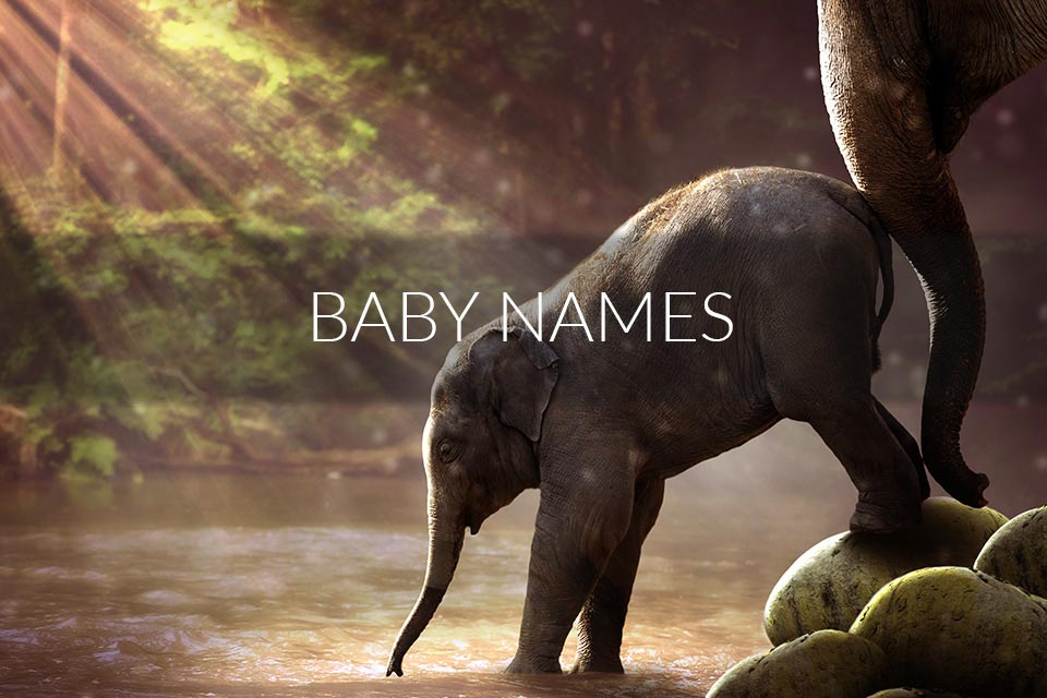 Choose The Best Name For Your Baby