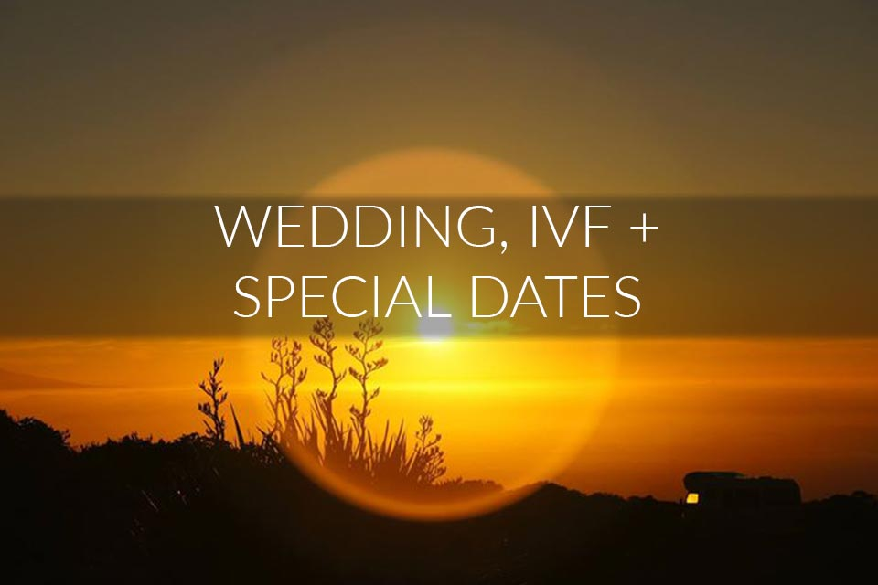 Wedding, IVF + Special Dates – your best date through astrology and numerology.